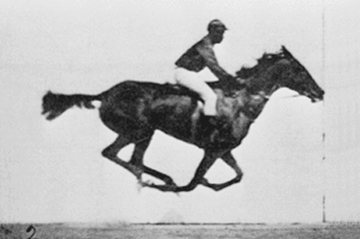 Racehorse photo by Eadweard Muybridge